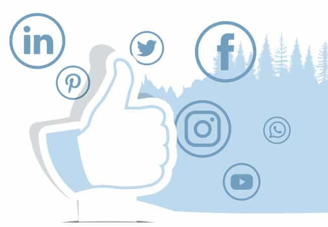 reseaux sociaux statistiques et performances webmarketing Naskigo